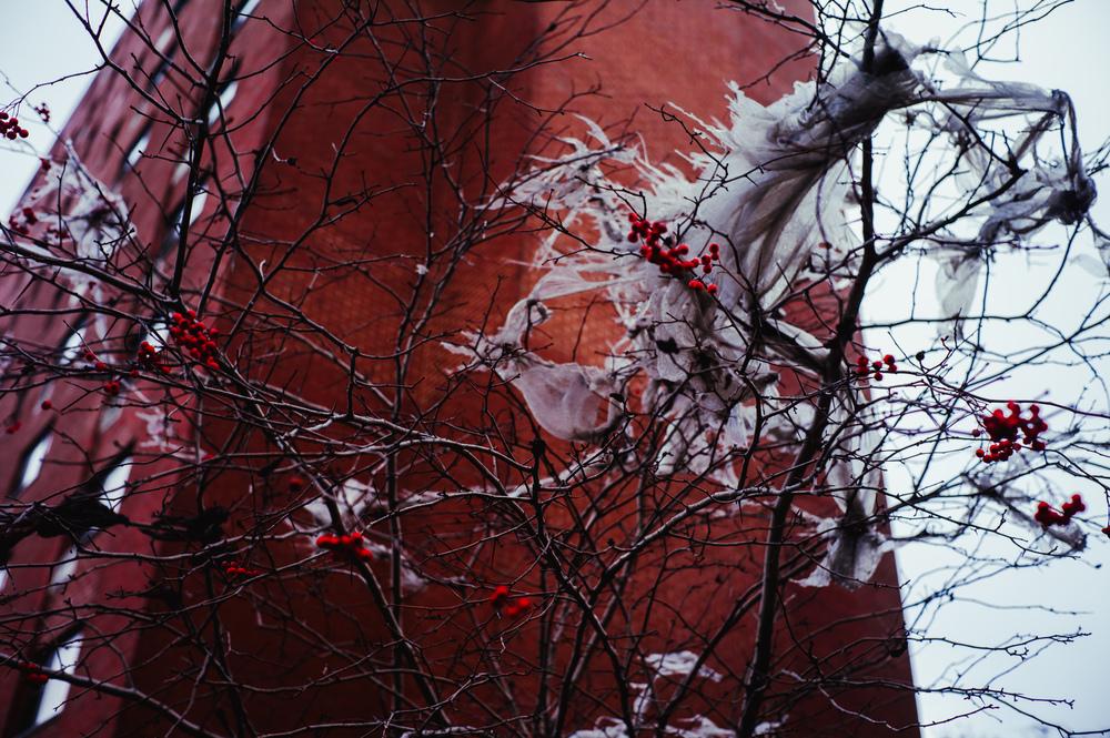 January_16-68.jpg