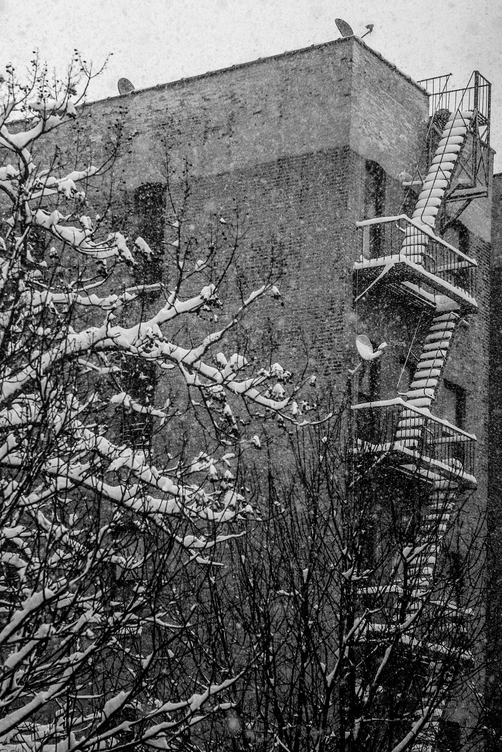 January_16-116.jpg
