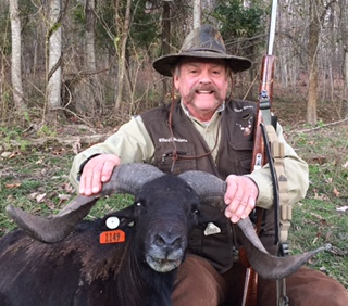 Willard McDaniel with super-wide Black Hawaiian Ram!