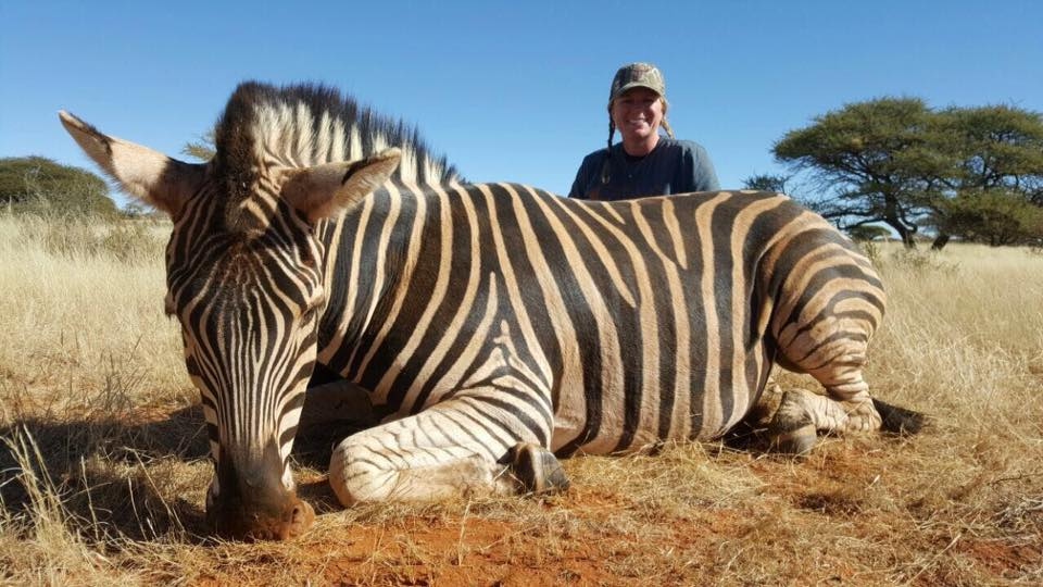 Danah Gilliland Zebra.jpg