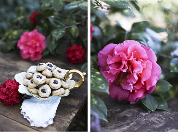 Crancookiesblog12.jpg