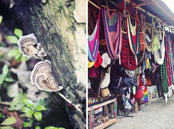 CostaRicaTravelBlogAKindredJourney101.jpg
