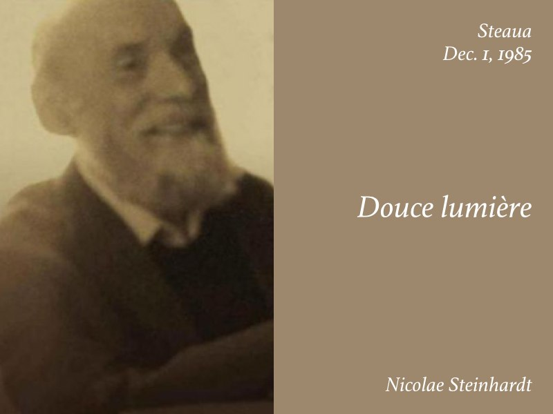 Essays — Douce Lumière, Nicolae Steinhardt