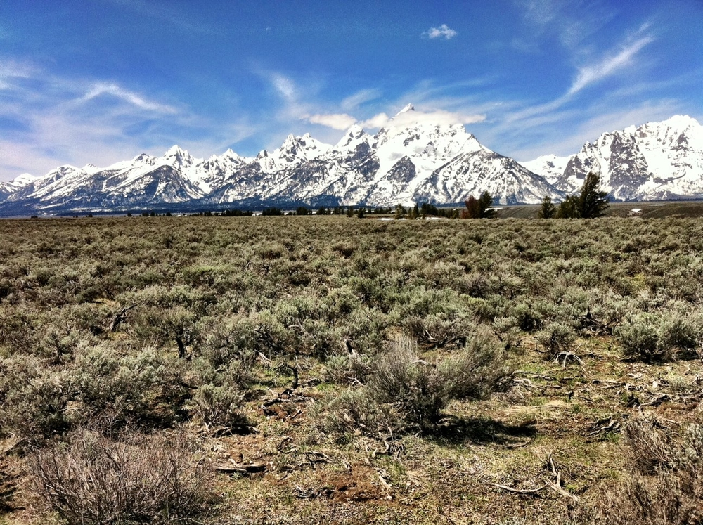 The storm has passed through showing the majestic Grand Teton Range. These are comprised of some of the oldest rocks in North America and one of the youngest mountain ranges.