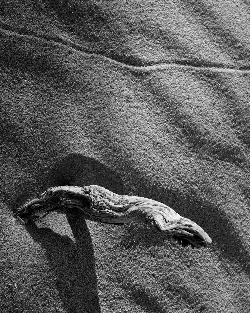 2012_10_14 | Borrego Dunes_2012-10-14_17-48-35_IMG_2762_©ArieKorporaal2012 copy.jpg