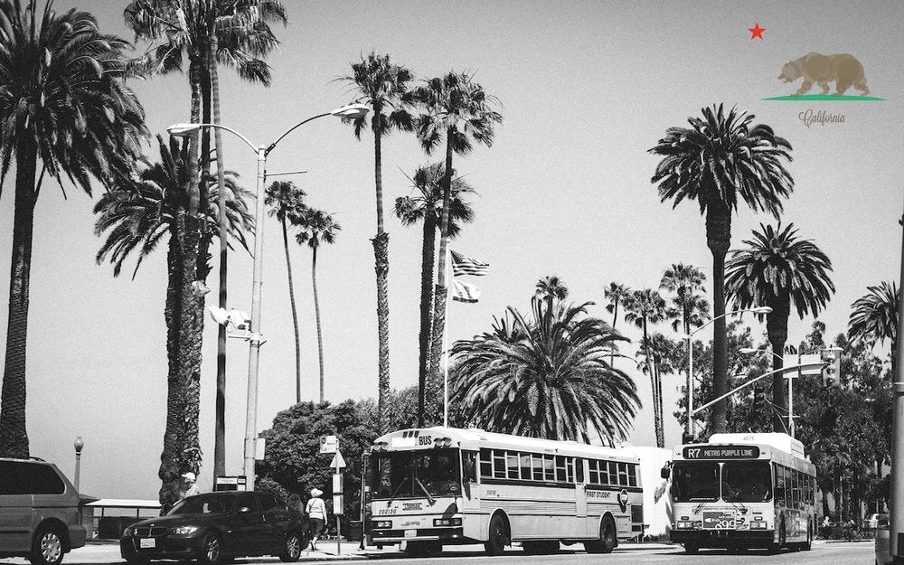 Melements_Cali_beach.jpg