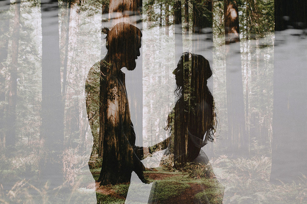 redwoods elopement