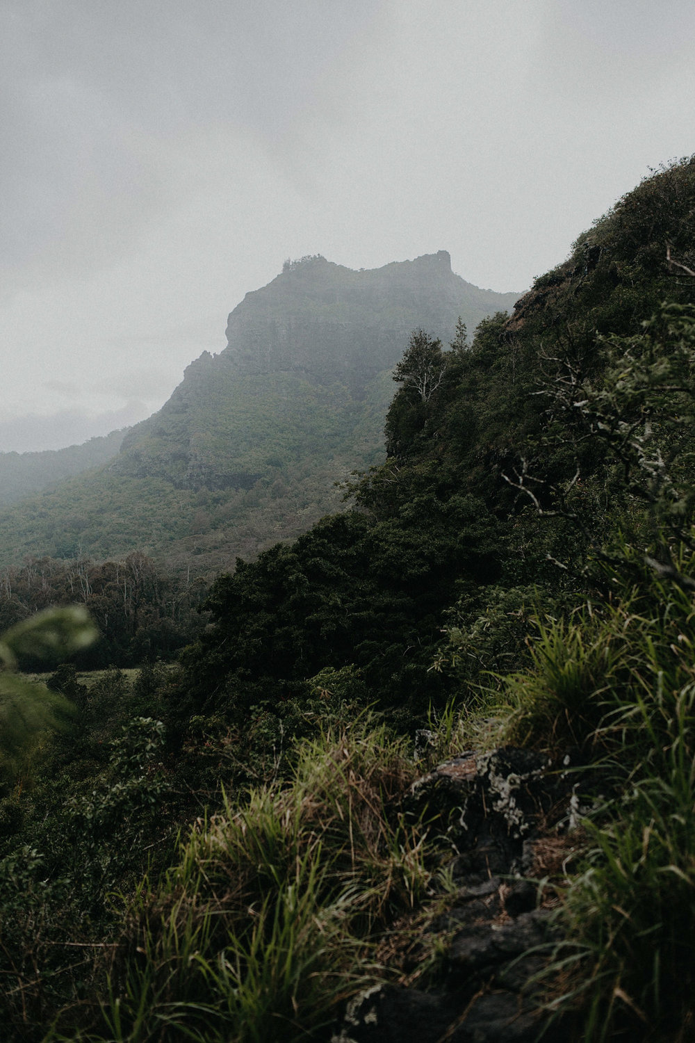 hawaii elopement mountain photo
