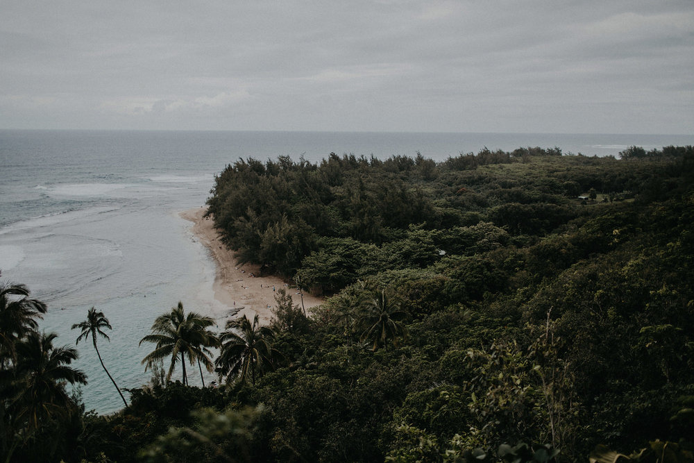 hawaii elopement beach coast ocean jungle photo
