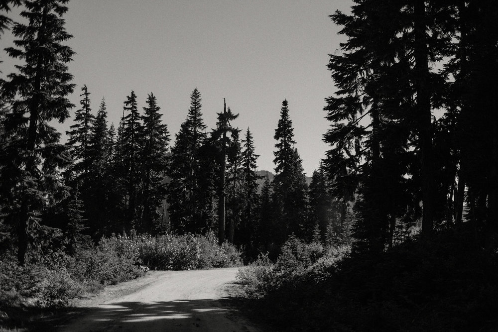 black and white cascade mountains dirt road photo