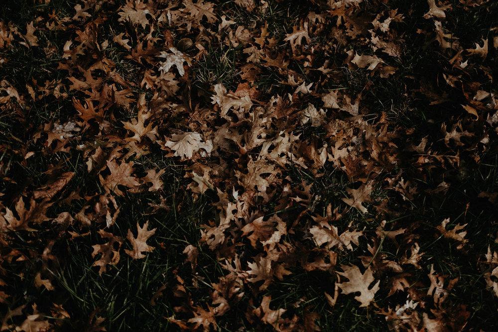 cincinnati warehouse wedding leaves on the ground