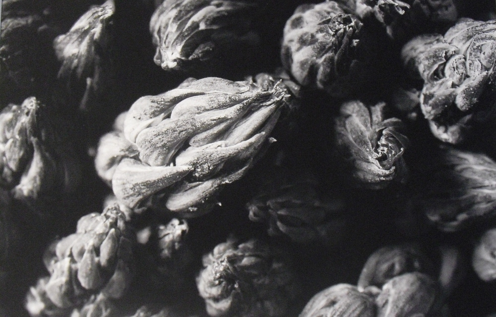 F. Mantegna - Architetture di natura (6).JPG