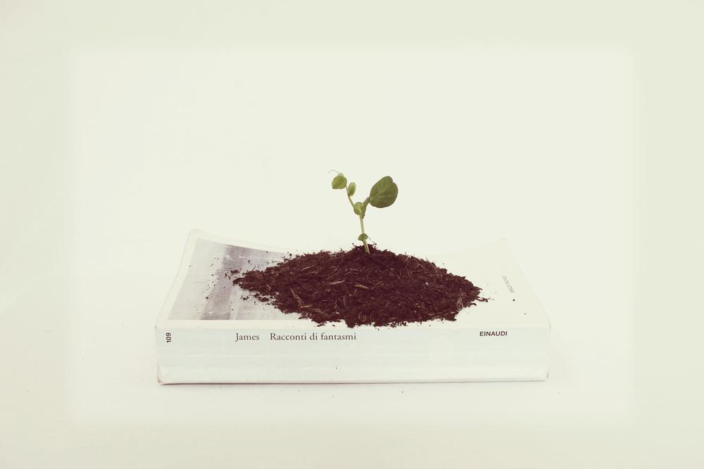 Testa L. - Crescita.jpg