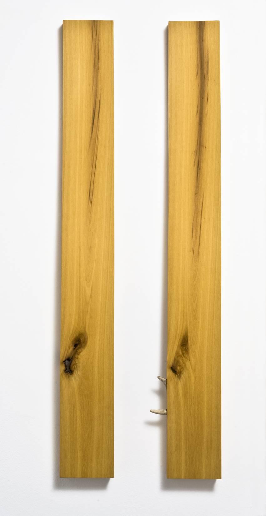 Arecco F. - 1, 2, 3 (bosso giallo).jpg