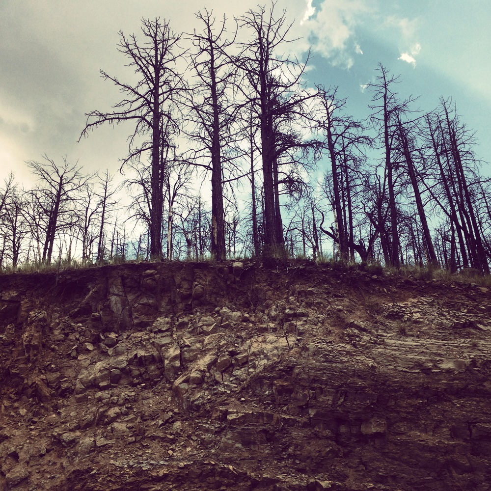 Ruidoso after the fires.