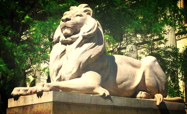 One of the New York Library Lions, though I don't know if it is Patience or Fortitude...