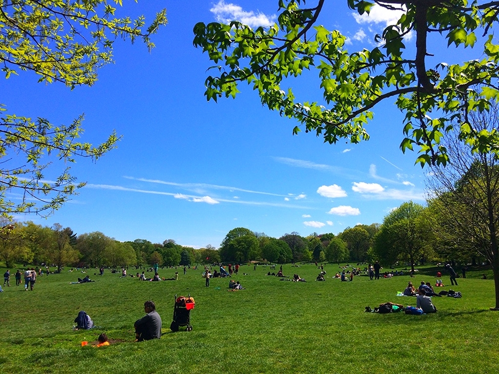 A lazy Sunday in Prospect Park.