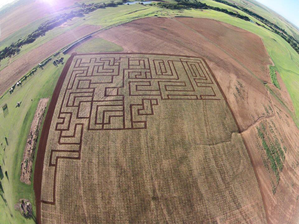 early maze better.jpg