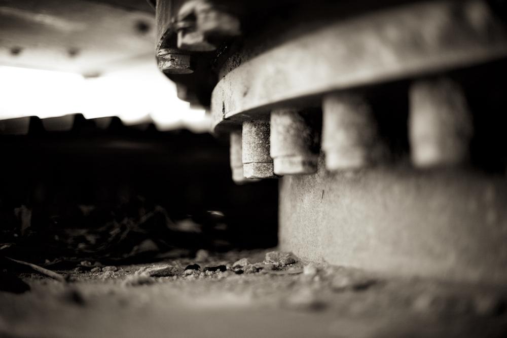 October 27-Chastain 16.jpg