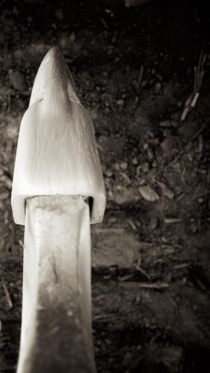 October 27-Chastain 28.jpg