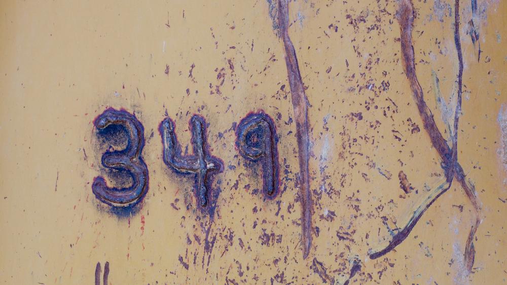 OF8151516.jpg