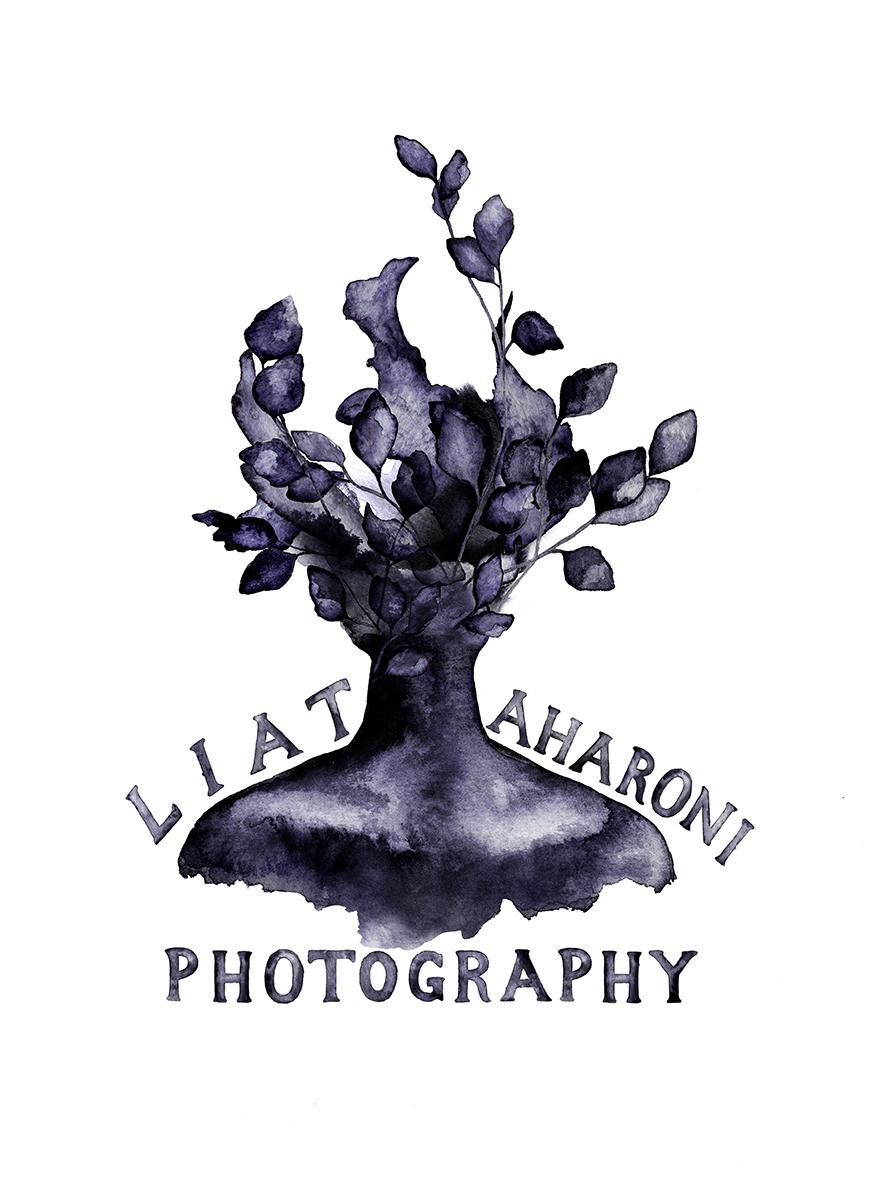 magical toronto photography