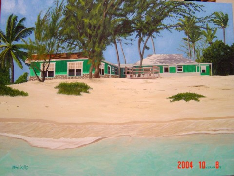 WHITE MAN IN BLUE HILLS, ACROSS FROM THE HOWELL'S   2004,   My brother's address in Turks and Caicos when we sent him a Fedex package.  SOLD    Oil on canvas