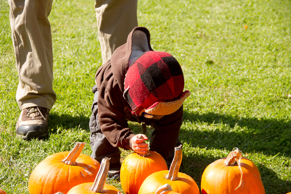 NWM Family Fall Event-104.jpg