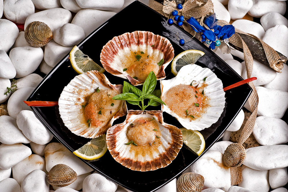 Clams, shells, seafoods