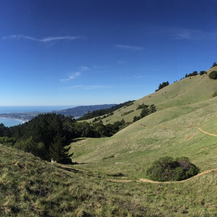 Matt Davis Trail, Mount Tamalpais // Photo Credit: Max Maloney