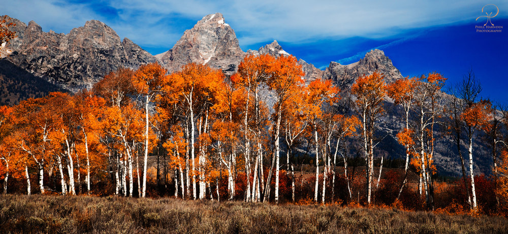 G-_Photos_personal_landscape_Tetons-Fall-2014_2014_2014-09-24_Finished_Tetons-Fall-2014-1651.jpg