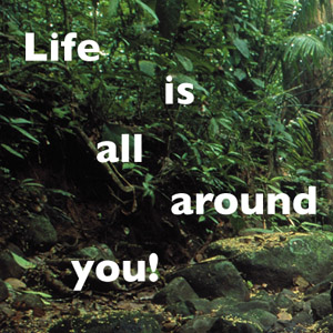 Life is all Around Us - STRI Kid's Books 2