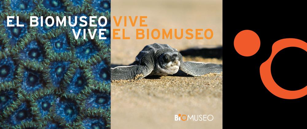vive_bio_0.jpg