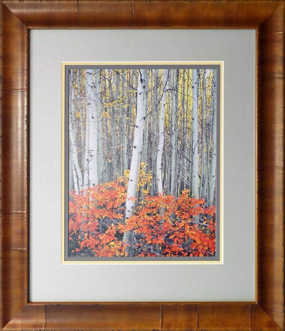 "Mike Putnam ""Aspen Grove"".  Custom Framed by High Desert Frameworks!, Bend Oregon."