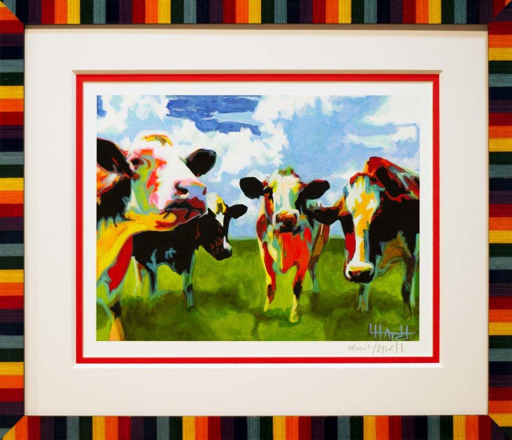 HDFW-Bella-Cows-1500x1292-WEB.jpg