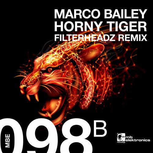 horny tiger.jpg
