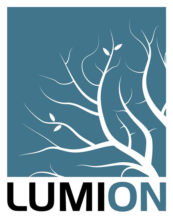 lumion_logo_2016_twocolors.png