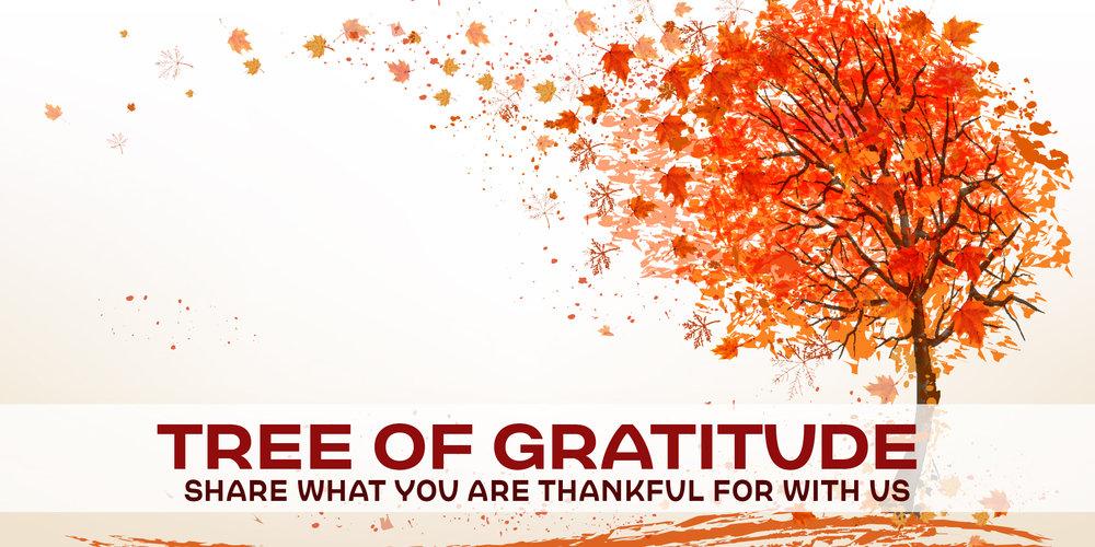 tree-of-gratitude