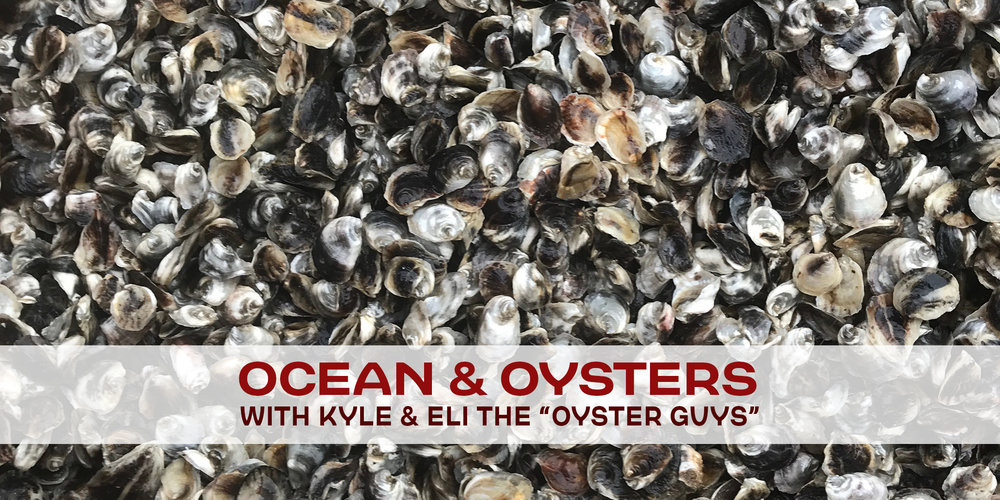 ocean-oysters-1-20