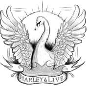 harley_live.jpg