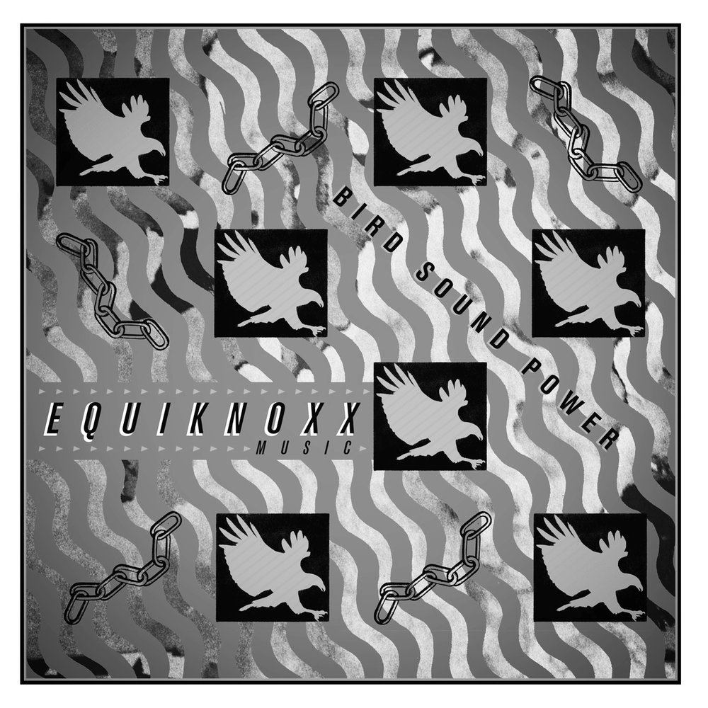 equiknoxx_bird_dds.jpg