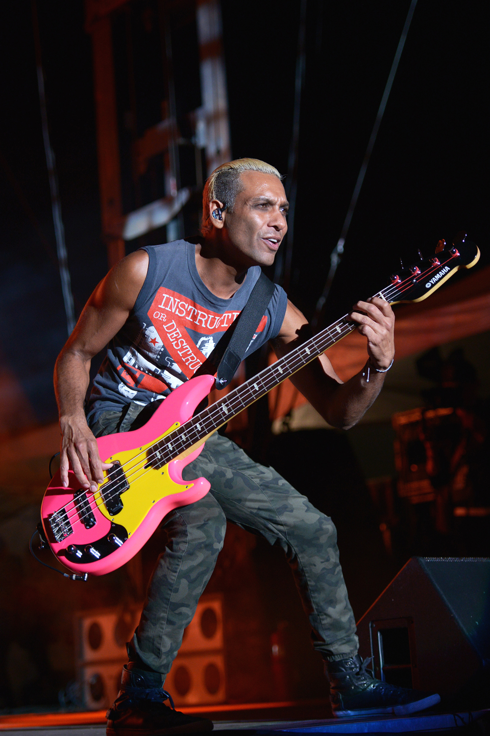 nodoubt_riotfest_chicago_2015_5.jpg