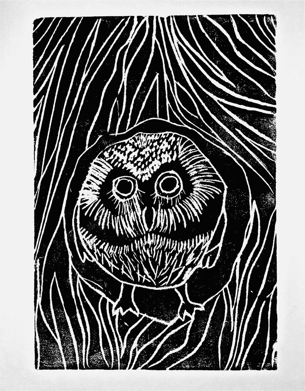 Owl_corrected.jpg