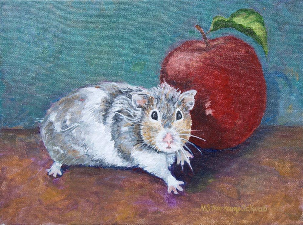 Hamster - 1.jpg