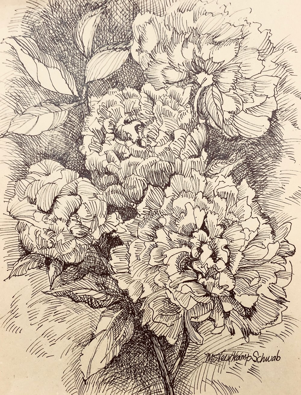Pen_and Ink_Peonies - 1.jpg