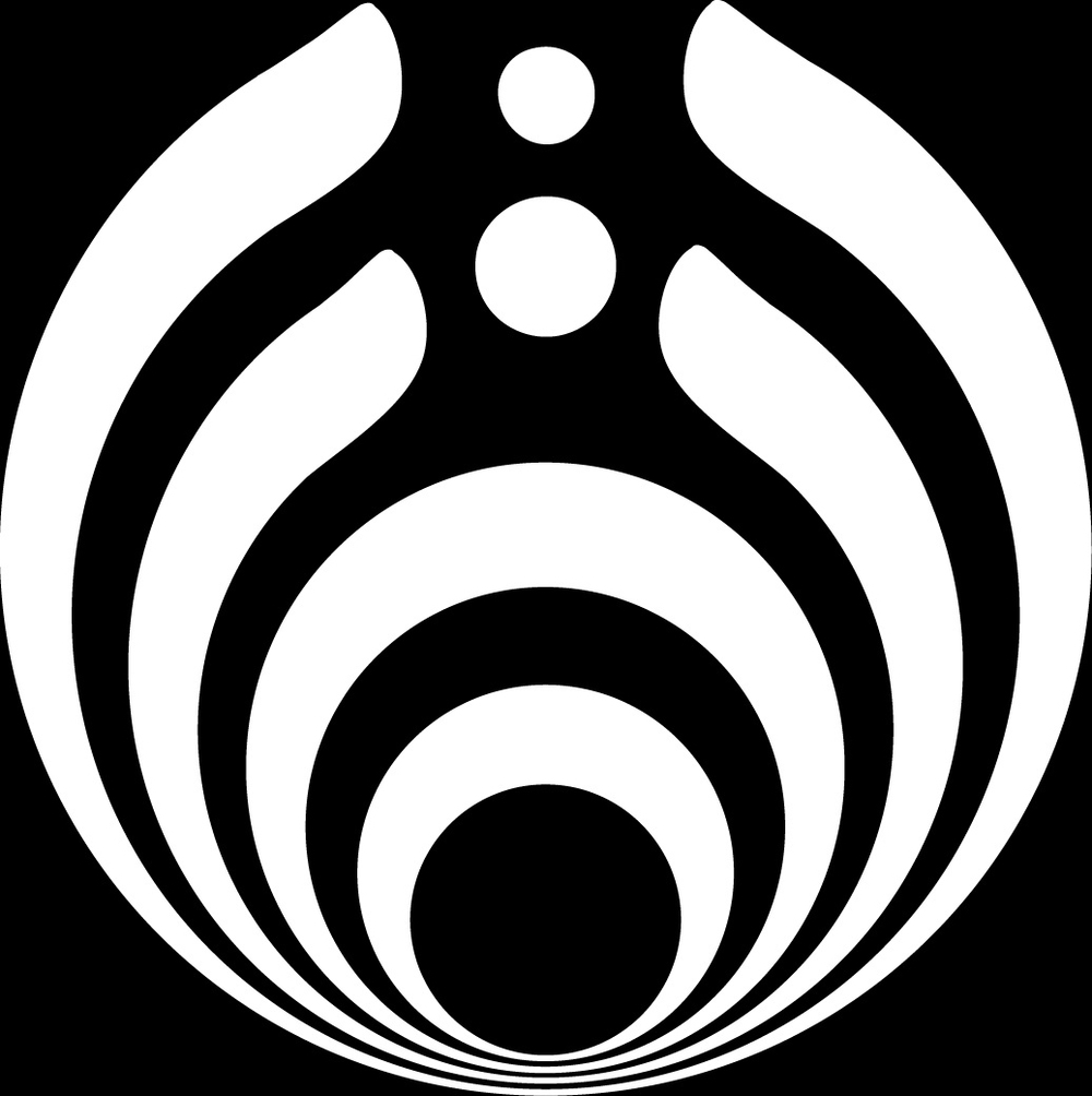 Ever Wondered What Bassnectar's Logo Signified?