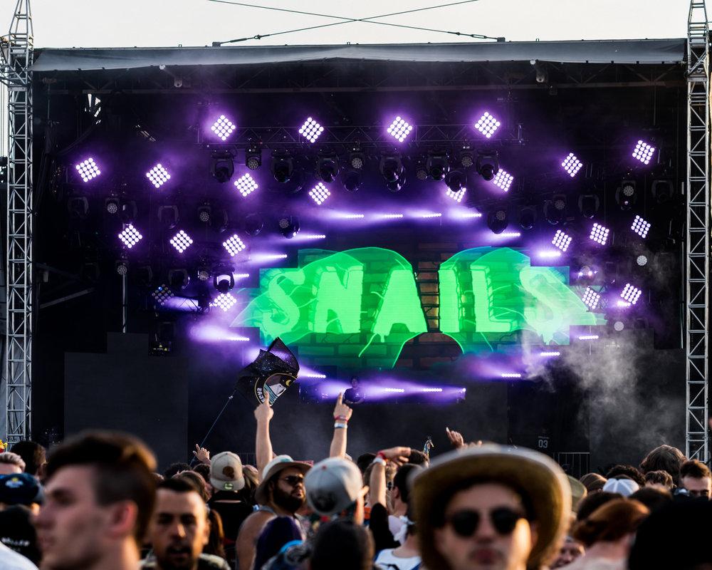 Snails pic 1 .jpg