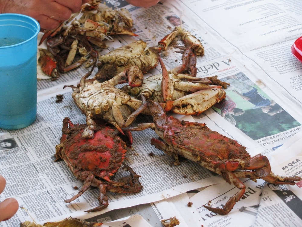 Seniors-crab-feast-2013_10.JPG