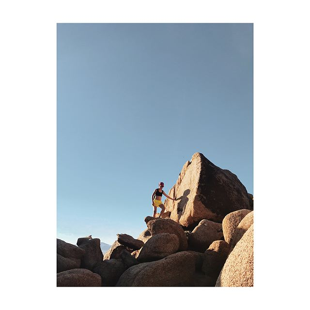 New PR: drank a gallon of water and pee'd once for a whole day in the desert 🏅 we took a retreat from Silicon Valley to Joshua Tree, climbed some rocks, did some Topanga things, did some LA stuff, and snapped a few okay views 📸🏜