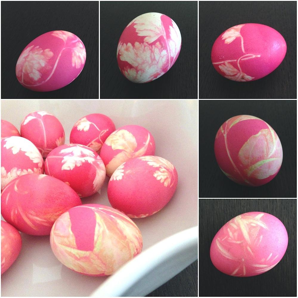 Easter_2013_pink.jpg